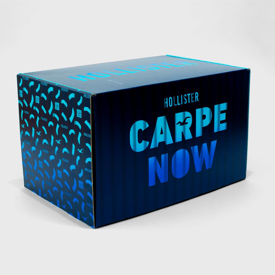 HCO_CARPE_BOX3