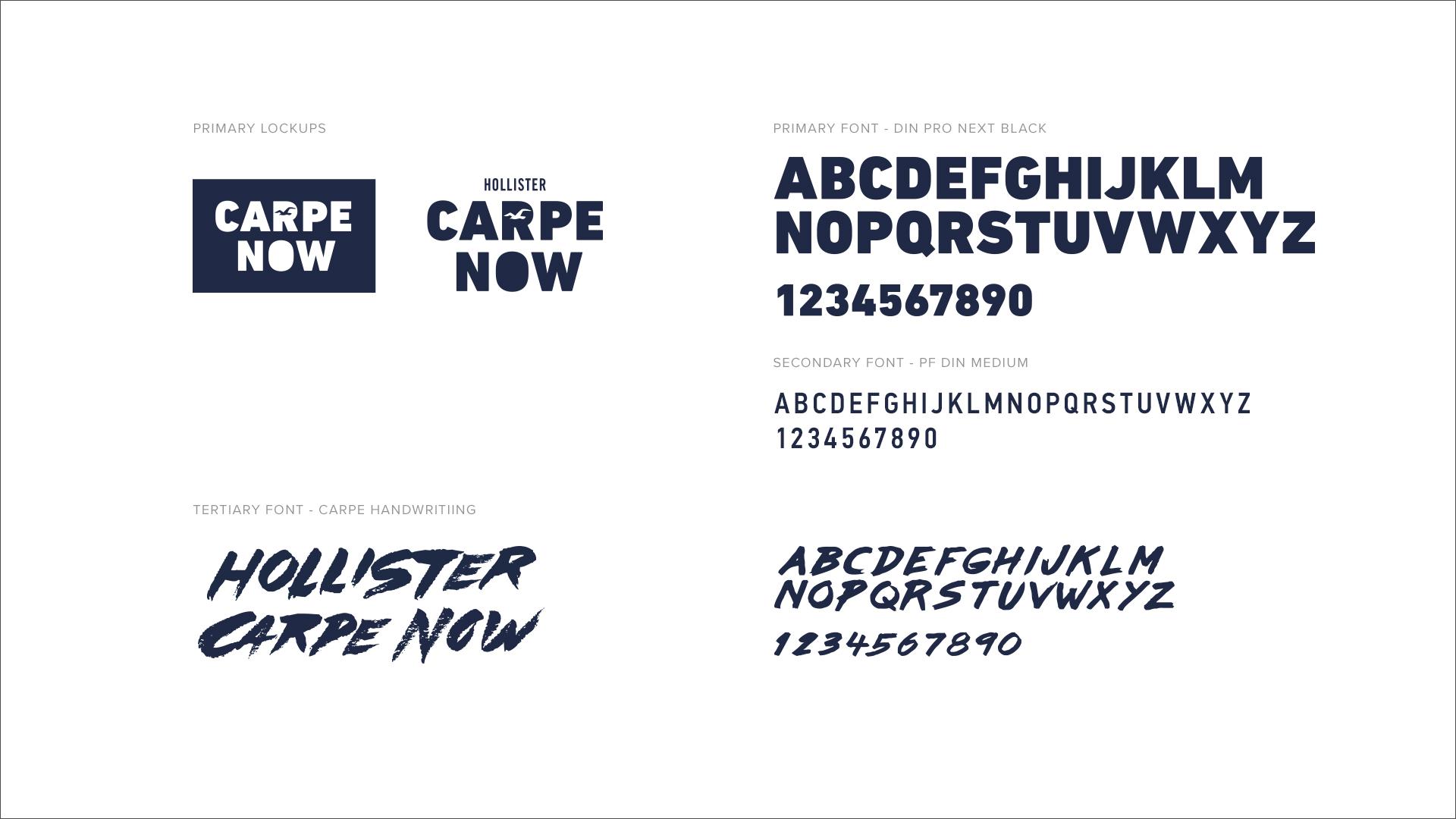 HCO_CARPE_TYPE_STYLE
