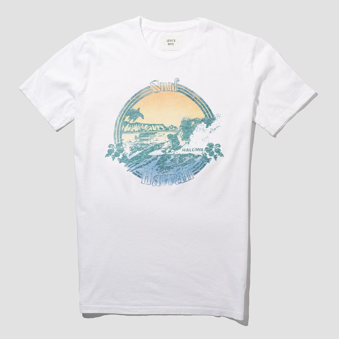 LEVIS_SURF3